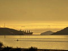Golden morning (Ian@NZFlickr) Tags: ship harbour nz otago dunedin aotearoa freight departing naturepoetry absolutegoldenmasterpiece truthandillusion
