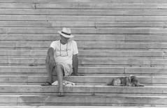 My days in Athens (salvatore zizi) Tags: athens athina atene museum people arheological dog man balcjk white june stairs steps