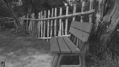 The Lonely Bench (RJ-Clicks) Tags: bw blackandwhite bench park emptybench rehanjamil rjclicks nikond5100 nikon d5100 pakistaniphotographer photographerindammam photographerinkhobar pakistani
