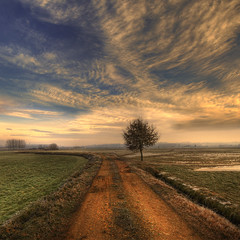 Cold morning (rinogas) Tags: morning winter italy clouds sunrise nikon piemonte cuneo nikkor1224dx sommarivadelbosco vertorama rinogas