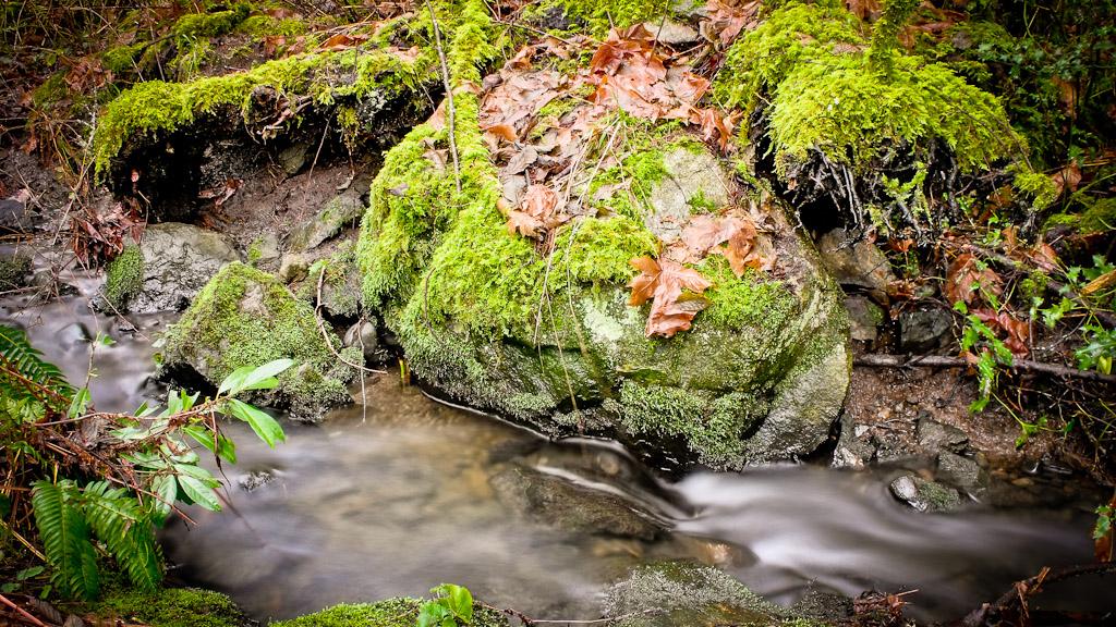 Rocky Stream 5
