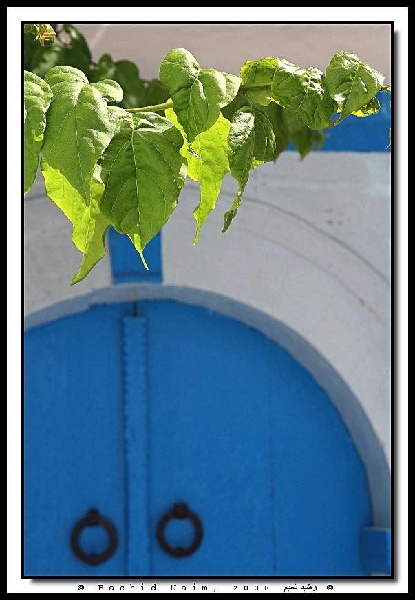 No Title - Sans titre (Hammamet, Tunisia)