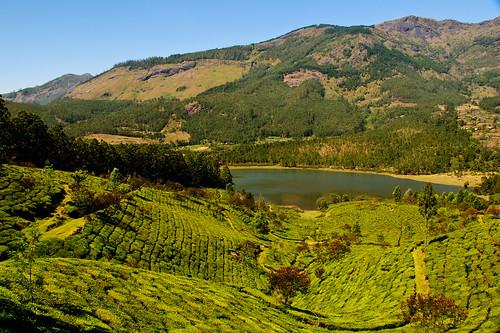 Mattupatti Landscape
