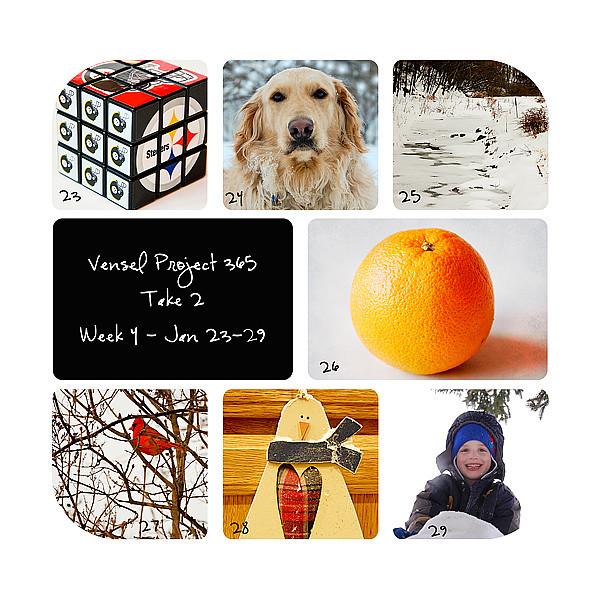 Week-4-Collage