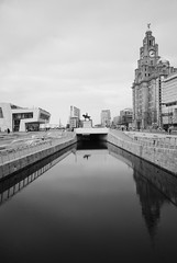 Reflections of Liverpool (Thirteensteps13) Tags: uk england bw reflection water monochrome liverpool docks river boat canal waterfront riverside harbour ships gb accept shipping liverbird mersey waterway scouse reject3 reject4 reject1 reject6 reject7 reject2 rnbmersey accept2 reject5