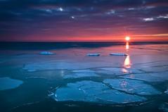 Sunrise on Ice (baldwinm16) Tags: winter ice nature water sunrise reflections illinois january lakemichigan greatlakes il fortsheridan openlandslakeshorepreserve