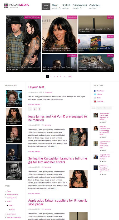 polarmedia wordpress theme