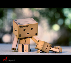 I'm Tired (ANOODONNA) Tags: danbo imtired sigma105mmf28exdgmacro canoneos50d danboard anoodonna  alanoodalrasheed