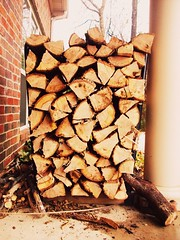 wood, keeps me warm (: (NeverGrowingUp) Tags: wood trees outside fire logs stack 365 firewood