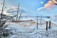 Mammoth Hot Springs Terraces (Daryl L. Hunter - The Hole Picture) Tags: sunset terraces mammothhotsprings yellowstonepark thermalfeatureyellowstonemammothhotspringyellowstonenationalparkmontanaunitedstatesof