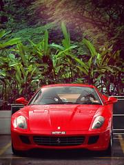 Natura (anType) Tags: red italy sports car italian asia ferrari exotic malaysia kualalumpur luxury coupe supercar sportscar gtb v12 599 fiorano rossocorsa worldcars