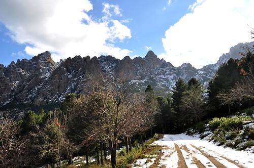 Départ de la balade à pied sur la piste forestière du San Petru : Massif des Ferriate
