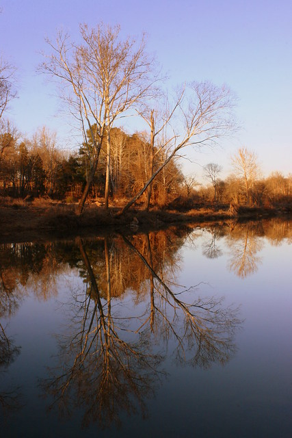 The Still Waters of the Piney River
