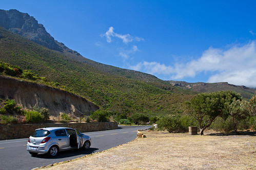 The Chapmans Peak Drive
