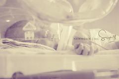 incubator-baby (dirty_a_ngel) Tags: newborn incubator inbali 3daysnew