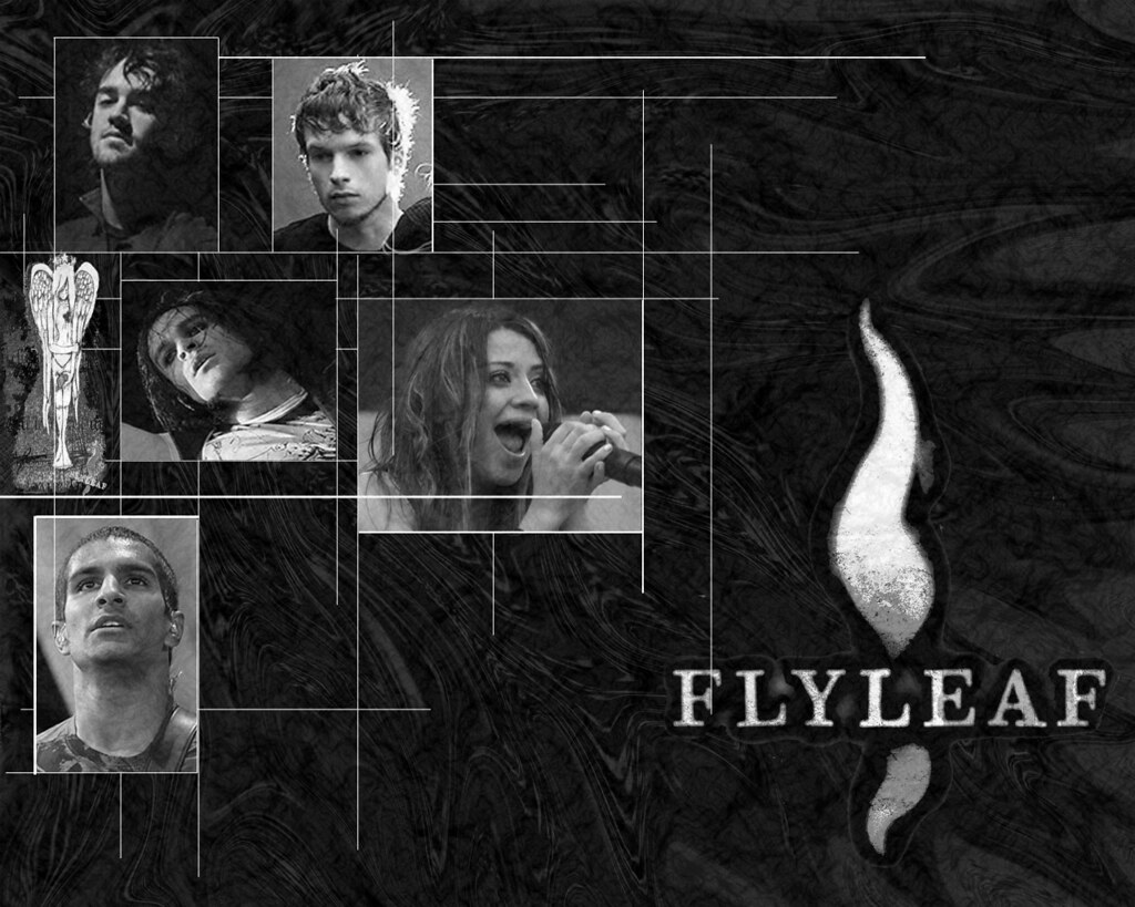 FlyleAF(USA)
