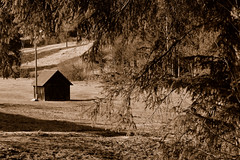 Schwarzwald (Black Forest), Baden-Wrttember, 12/02/11 (BernardG.) Tags: winter germany deutschland grua allemagne schwarzwald blackforest badenwrttemberg badenwrtemberg fortnoire allpicturesand bernardgrua