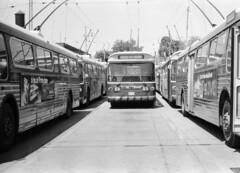 Scan11550c (citatus) Tags: ttc toronto canada trolley bus 1970 1980 minolta srt 102 bw 9203