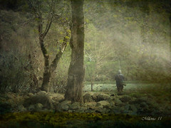 El arte de pescar .    The art of fishing (tan.solo_milenia .) Tags: art contemporary