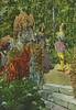 Lambs Skakespeare-Erzählungen Bild 14 (micky the pixel) Tags: illustration vintage buch book olivia herzog viola livre orsino williamshakespeare charleslamb wasihrwollt twelfthnightorwhatyouwill lambsshakespeareerzählungen