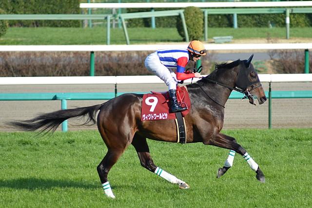 Victoire Pisa, Nakayama Kinen