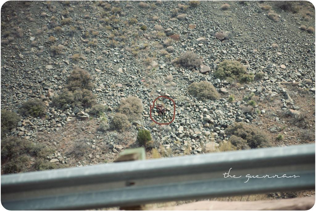 landscapes-52wr