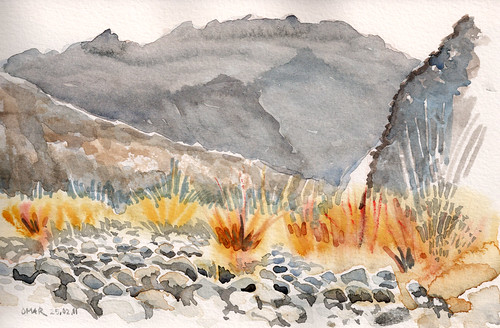 Wadi Fujeira01