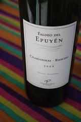 Faldeo del Epuyen 08