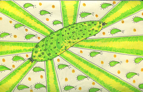 cucumber's king