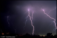 dogs scared thunder lightning