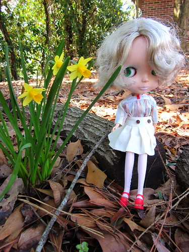 Noelle by the miniature daffodils.