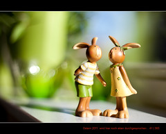 41/365 The easterbunny's are preparing Easter 2011 and Easter 2012 (Maarten Takens) Tags: funny dof bokeh maarten easterbunny paashaas takens osternhase maartentakens