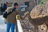 Dandole de comer a las bestias :) (Carlos J. Teruel) Tags: raw only d300 terranatura murciamurcia xaviersam fotoencuentrosdelsureste