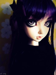 Maida portrait (miss_skittlekitty) Tags: cute project hair purple bjd luts soony delf playful picnik cerberus