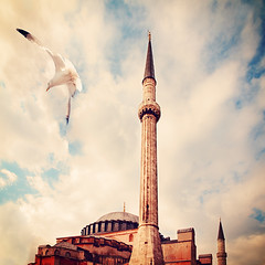 Hagia Sophia Museum , Istanbul (E.L.A) Tags: old sky cloud bird history tourism church animal museum architecture turkey square outdoors photography freedom flying europe day minaret wildlife islam religion nopeople istanbul mosque spire spirituality hagiasophia gettyimages byzantium ayasofya oneanimal traveldestinations colorimage famousplace ottomanempire buildingexterior internationallandmark animalthemes turkishculture saariysqualitypictures