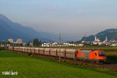 1216 902-7 2008.08.29. Schwaz (mienkfotikjofotik) Tags: eisenbahn rail railway cargo rts taurus bahn kolej 1216 vast bundesbahnen vasutak es64u4 privatbahnen