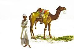 banda-e-sehrai (TARIQ HAMEED SULEMANI) Tags: pakistan tourism river desert tariq bahawalpur rohi panjnad yazman punjan concordians sulemani