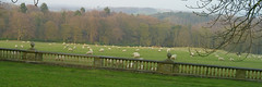 South Yorkshire - view from Wortley Hall (Casatigeo) Tags: statelyhome englandcountryside wortleyhall syorkshire