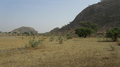 West Africa-2550