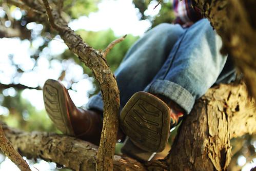 monkey boots tree