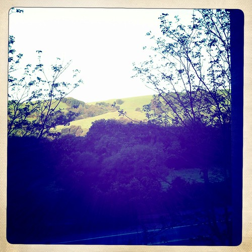 the gorgeous view from my studio window!