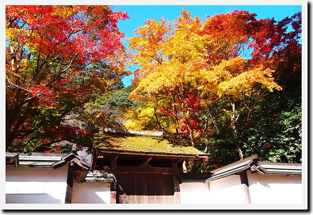 20101119_130809_室生寺