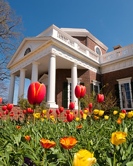 Thomas Jefferson's Monticello Spring (Sky Noir) Tags: travel flowers architecture virginia spring estate tulips thomas united landmark historic va jefferson states charlottesville monticello neoclassical monticelo skynoir bybilldickinsonskynoircom