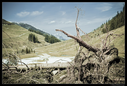 Avalanche Debris, Kar-Hochalm (Kitzbüheler Alpen)