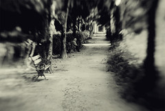 Time Waits For Nobody (josemanuelerre) Tags: park old parque white black tree blanco grass lensbaby bench way ancient focus camino time bokeh path negro banco nobody nostalgia desenfoque sit rbol vegetation wait nostalgic anciano viejo espera senda vegetacin tiempo hierba nadie sentar enfocar