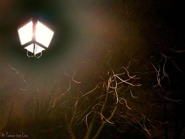 (278) Nocturno