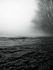 ... puoi trovarmi lungo il fiume ...you can find along the river ... (UBU ♛) Tags: blue blancoynegro water ticino noiretblanc kodak blues dreams bianconero blackwhitefilm blancetbleu bluacciaio blupolvere bluacqua ©ubu blutristezza unamusicaintesta blusolitudine landscapeinblues bluubu bluusato luciombreepiccolicristalli blurubato