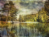 Sunny day at the lake. (Bessula) Tags: lake reflection tree art texture nature water forest landcape bessula 100commentgroup