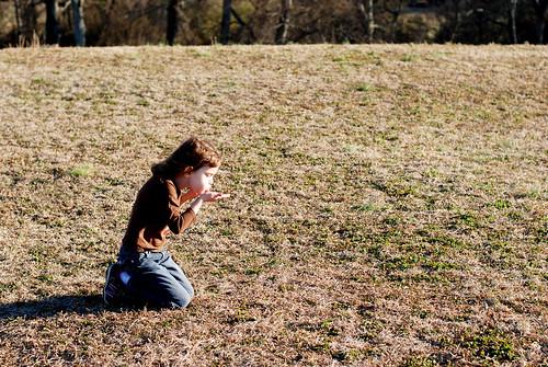 v Etowah Indian Mounds 092