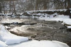 IMG_9131 (TheFarmer) Tags: creek cedar midfebruary